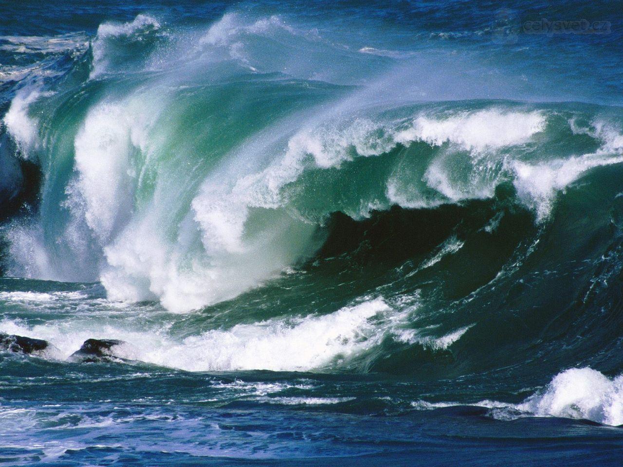 Если во сне стремительная волна накрыла людей и уносит их прочь, то вам грозят утраты и полная безнадега.