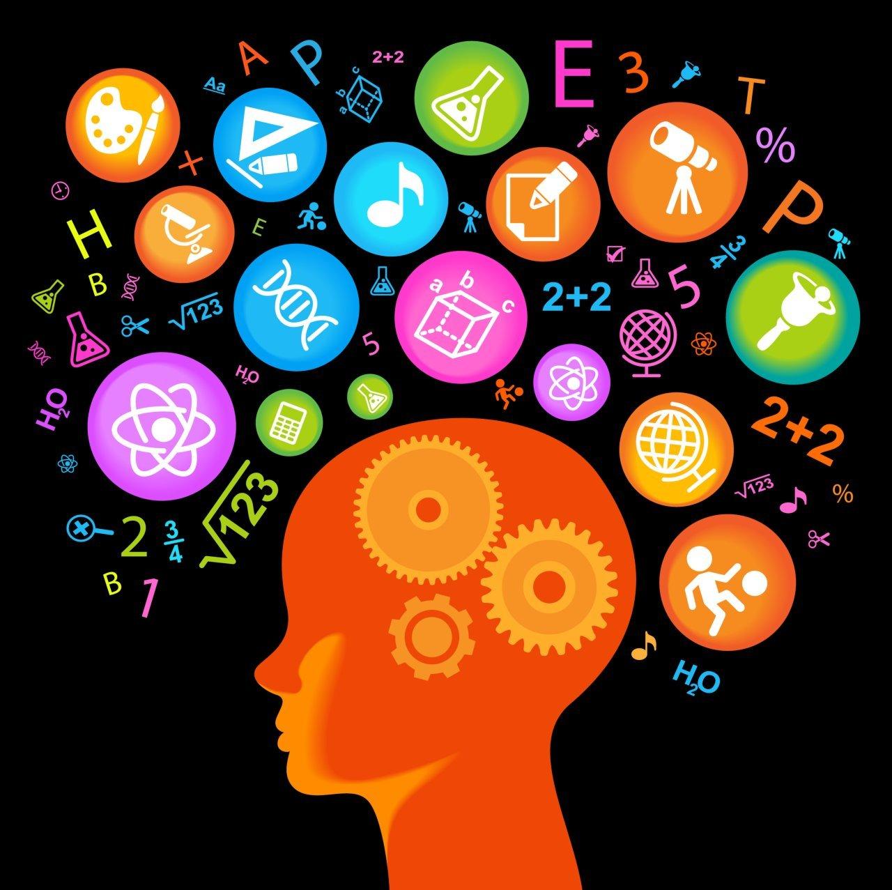 creative intelligence mental models essay