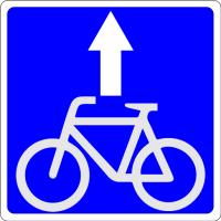 Дорожный знак: 5.14.2 Полоса для велосипедистов
