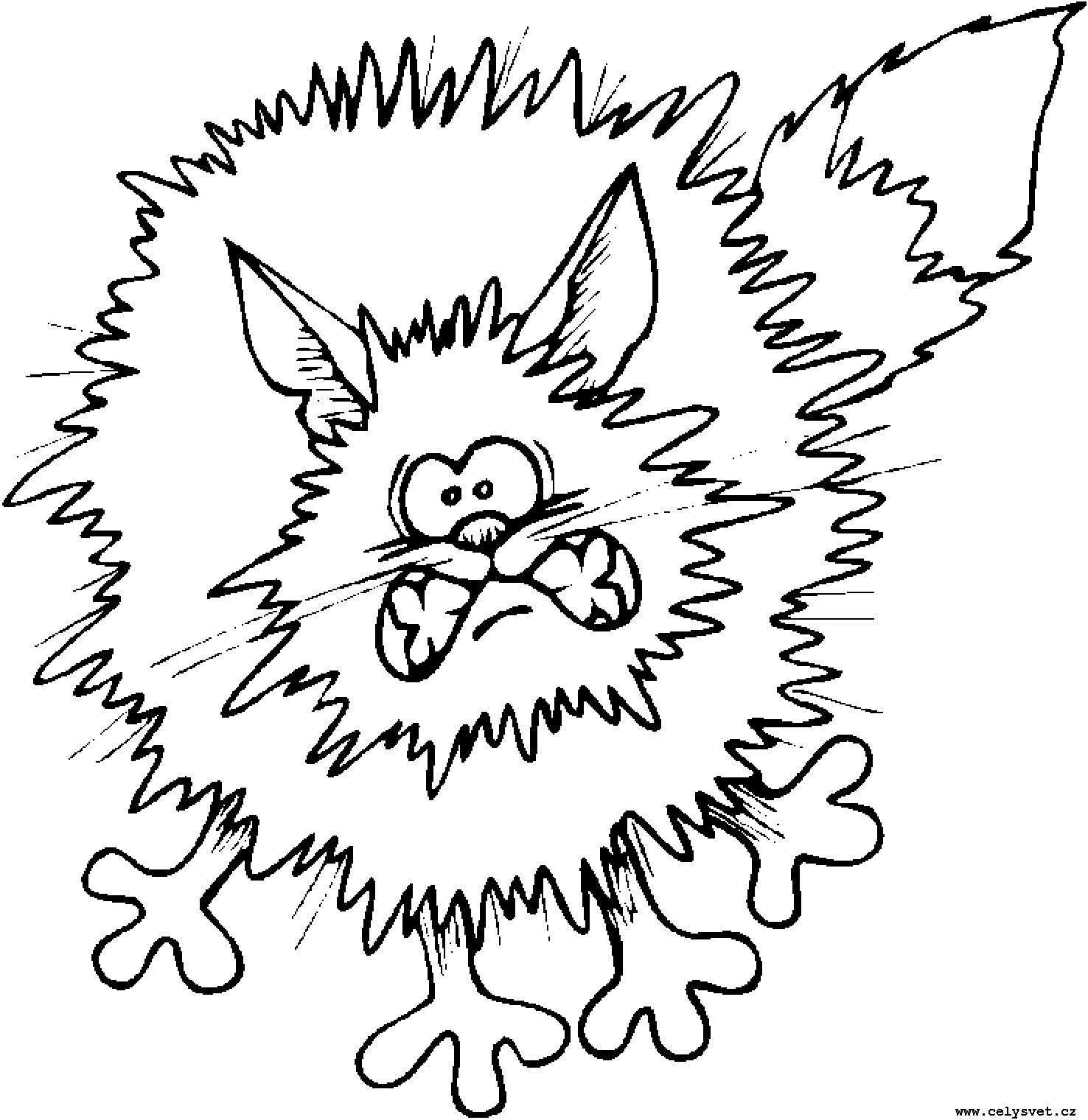 Раскраски для детей животные кошки