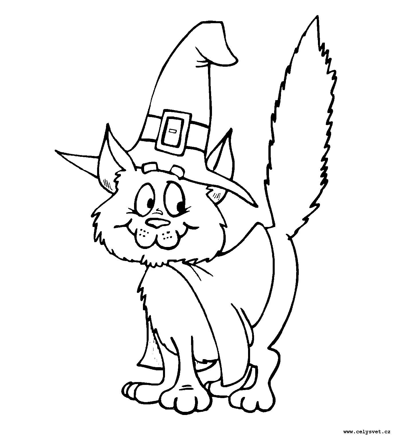Для детей животные кошки котята