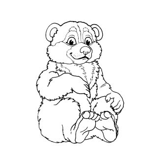 Белый медвежонок раскраска
